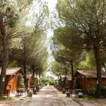 bungalow-assisi4-1